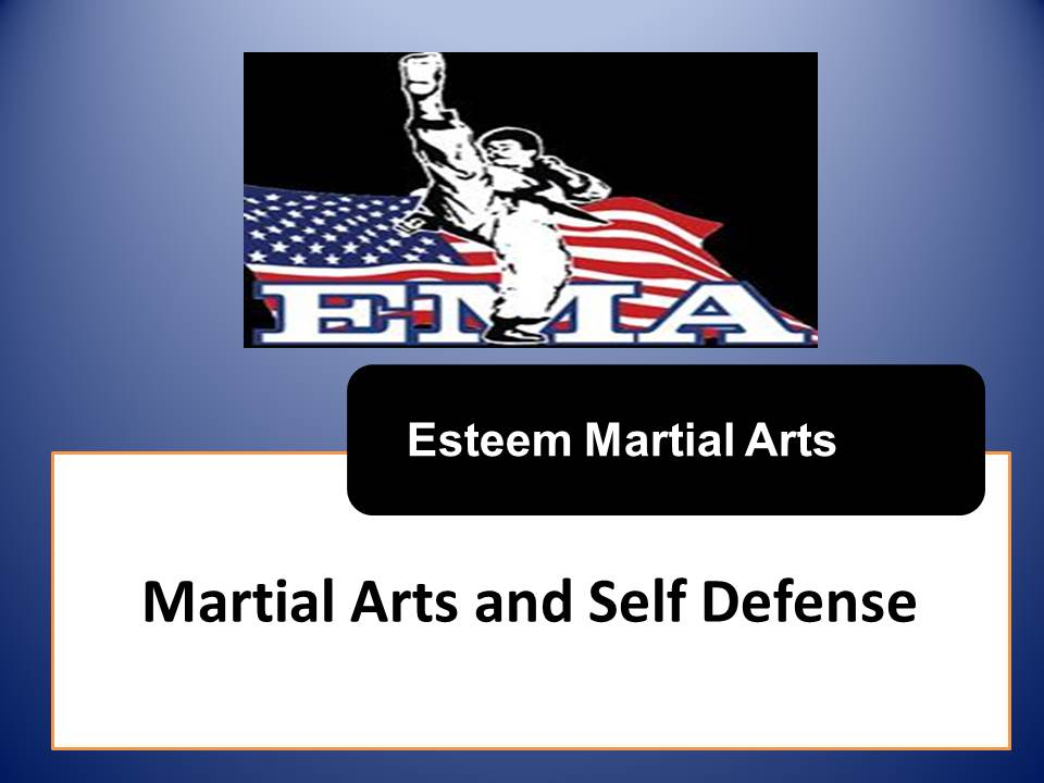 Esteem Martial Arts